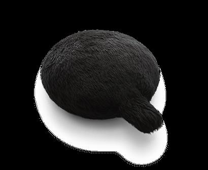 Petit Qoobo(プチ・クーボ) Noir